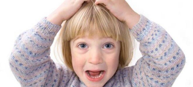 Педикулез у детей: причины, симптомы и лечение вшей у ребенка
