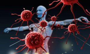 Какие анализы сдавать на иммунитет