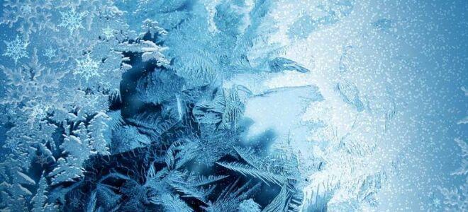 Как влияет жара и мороз на вшей, погибают ли паразиты